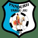 Pandurii Târgu Jiu club