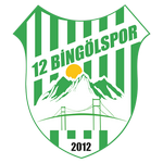 12 Bingölspor club